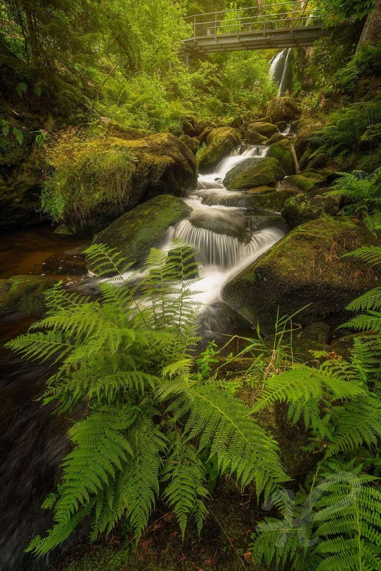 Ein weltberühmter Wasserfall