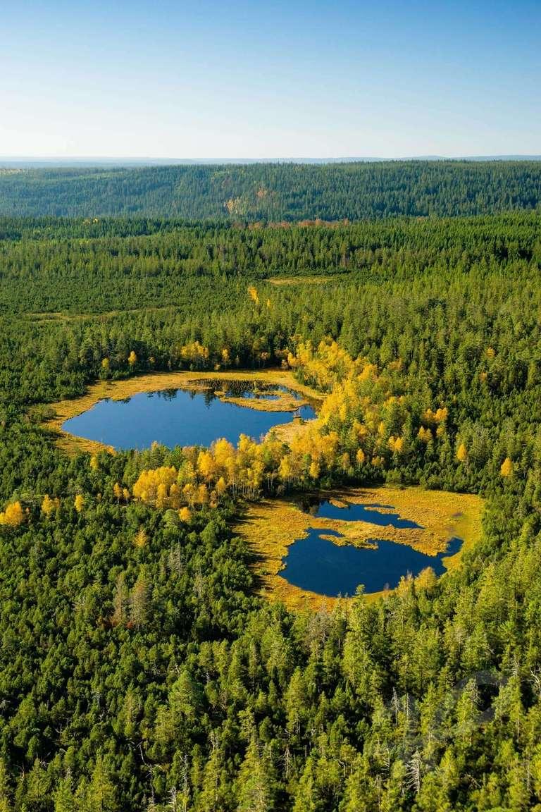 Wildsee aus der Luft