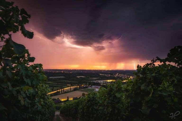 Gewitter bei inmitten von Weinreben in der Ortenau