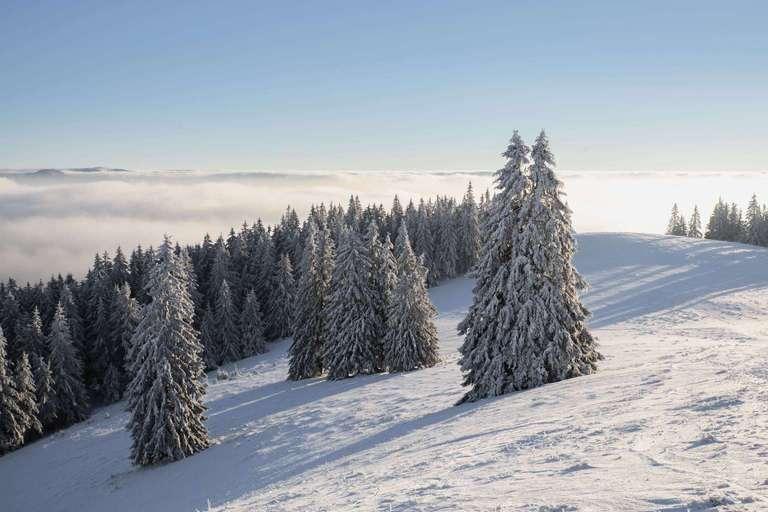 Wintertraum am Belchen