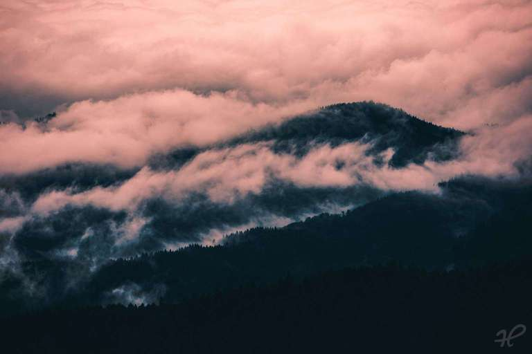 Moody Black Forest