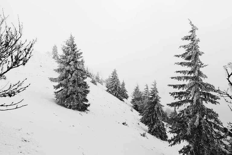 Kalter Winter am Belchen