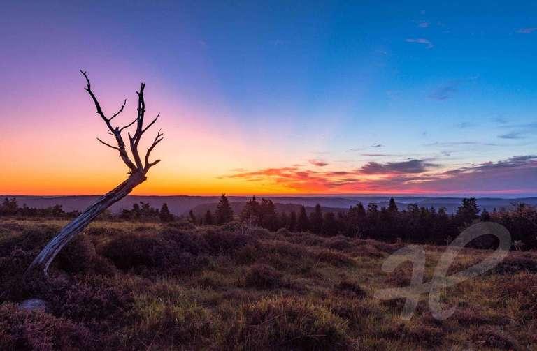 Herbstlicher Sonnenaufgang am Schliffkopf