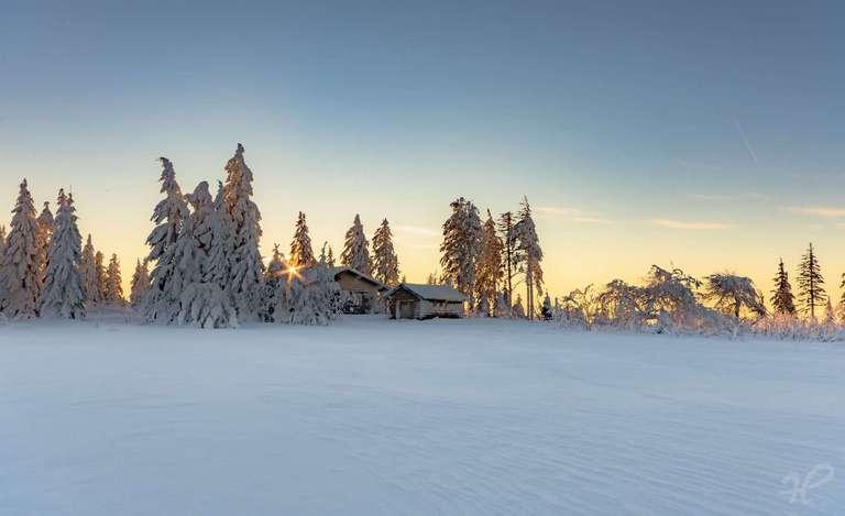 Wintermorgen aif der Hornisgrinde