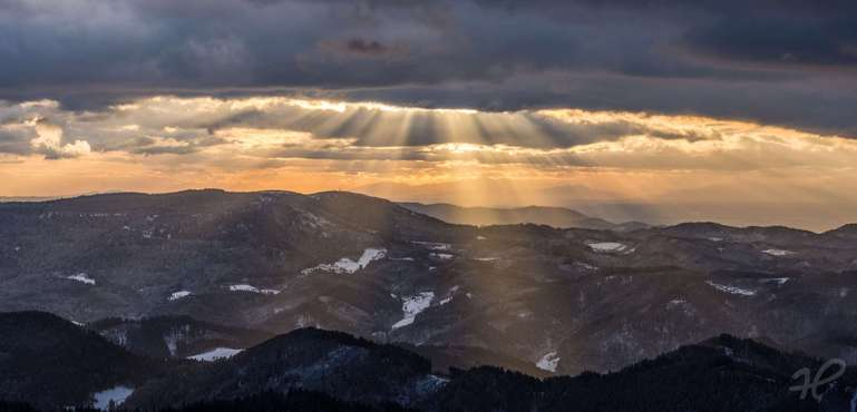 Schwarzwald-Lichtshow