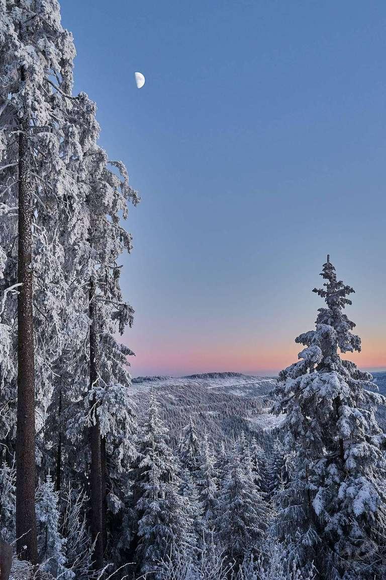 Mond über Winterlandschaft