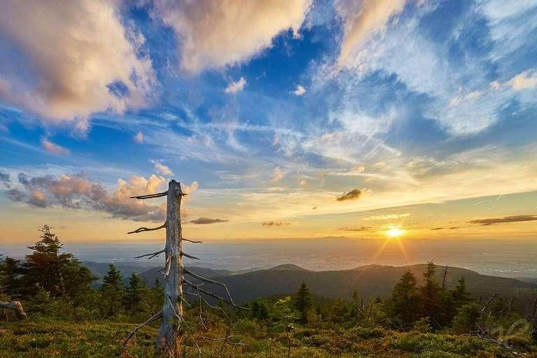 Sonnenuntergang auf der Hornisgrinde