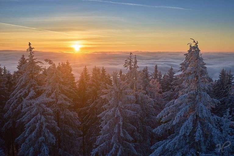 winterlicher Sonnenaufgang auf dem Brandenkopf