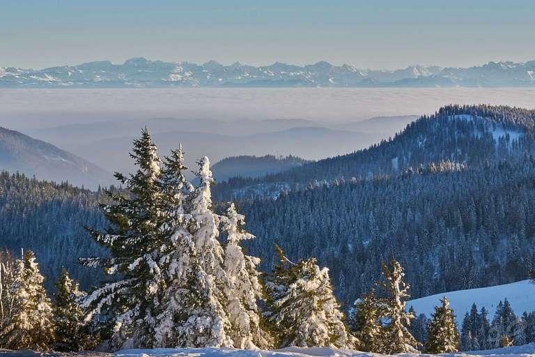 Alpensicht am Feldberg