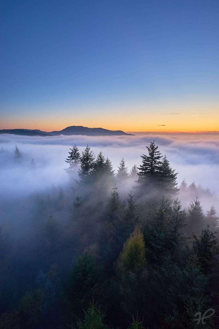 Nebel auf dem Geigerskopf