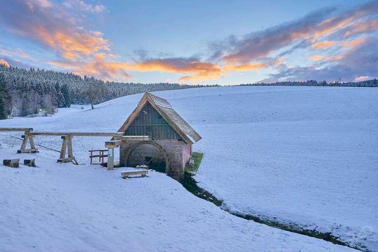 Mooswaldmühle im Winter