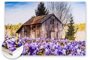 Unsere Heimatfotos Druckprodukte: UV-Direktdruck auf Holz - die nachhaltige Variante ein Wandbild herzustellen. Dabei wird das Motiv direkt auf eine Möbelbauplatte aufgedruckt. Das ist nicht nur nachhaltig, auch ist es sehr kunstvoll