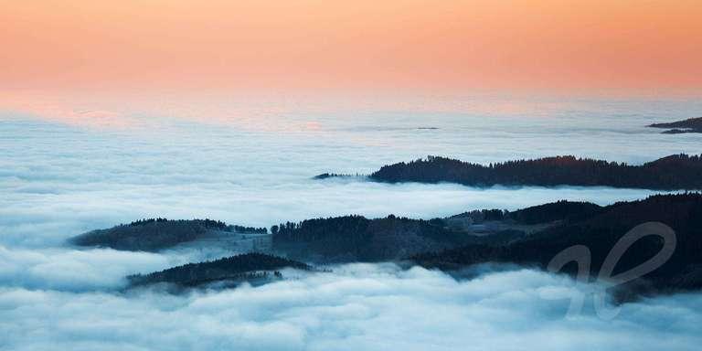 Schwarzwald Inseln im Nebelmeer