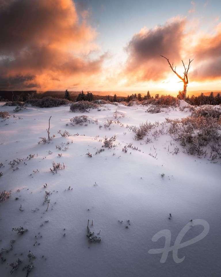 dramatischer Sonnenaufgang auf dem Schliffkopf