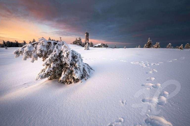 Winterlandschaft auf der Hornisgrinde