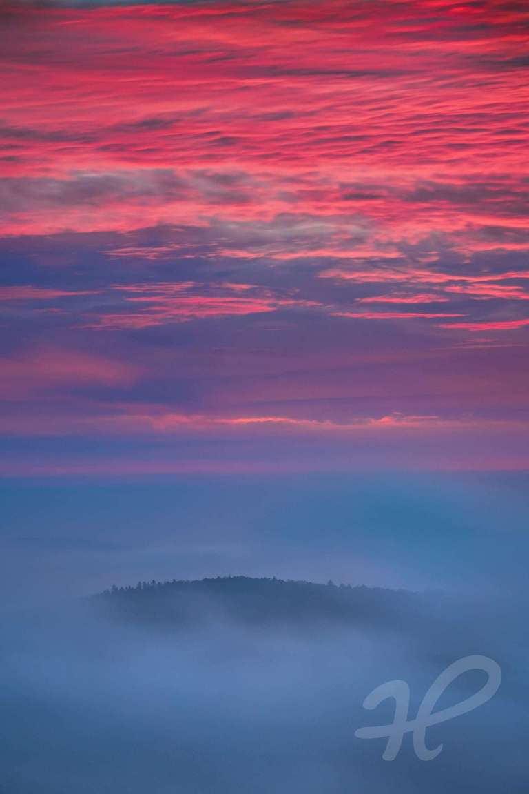 Pfälzerwald im Nebelmeer