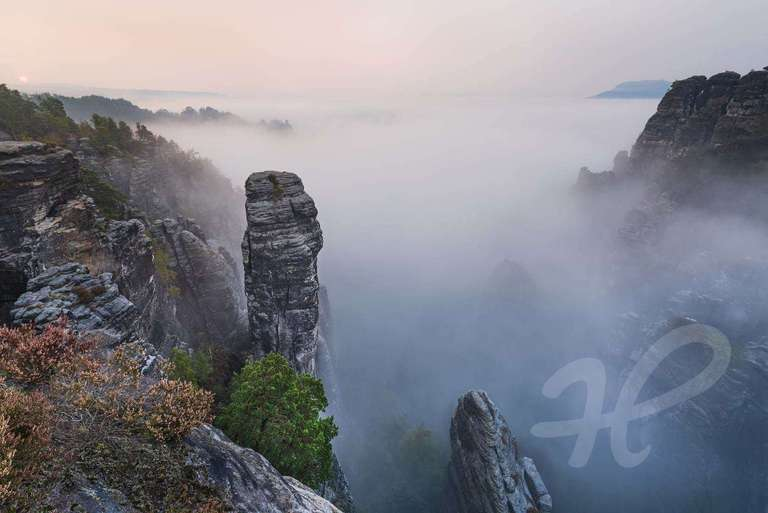Höllenhund im Nebel