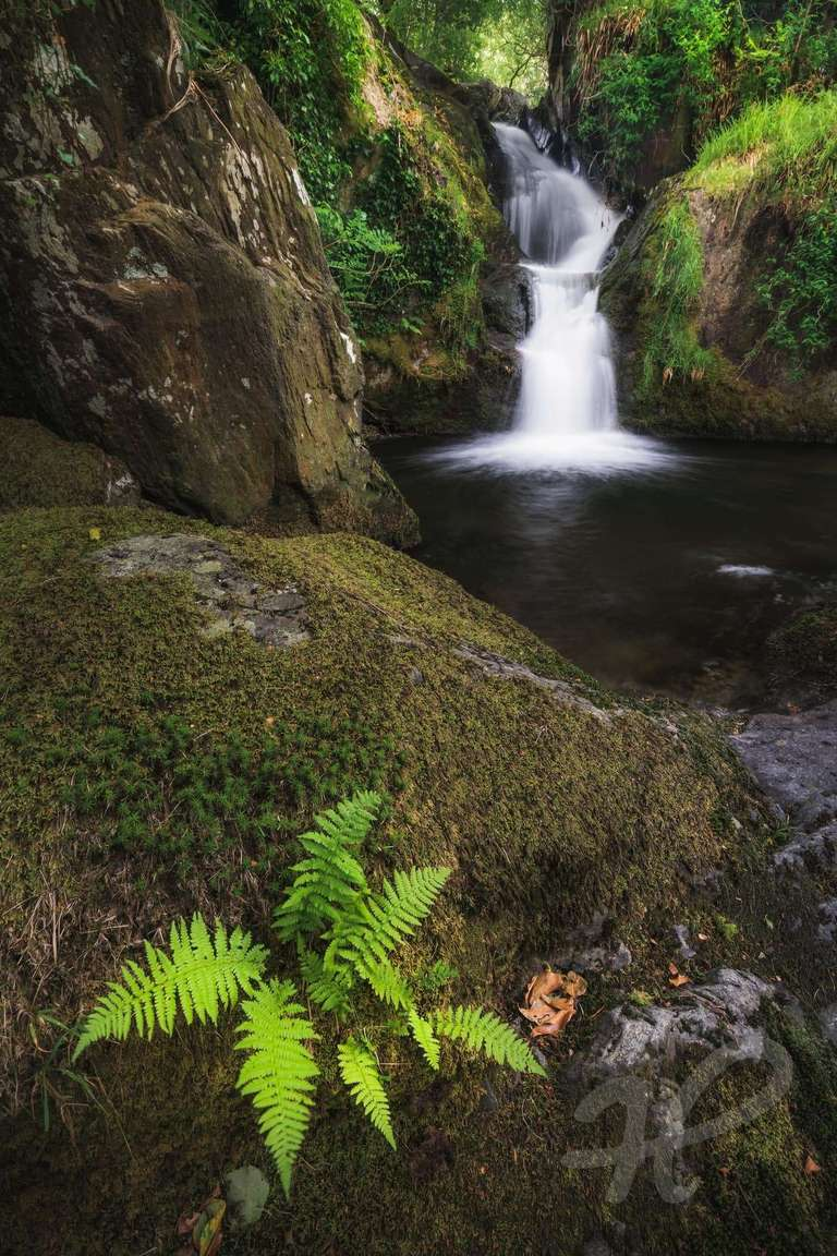 Dolgoch Falls Snowdonia
