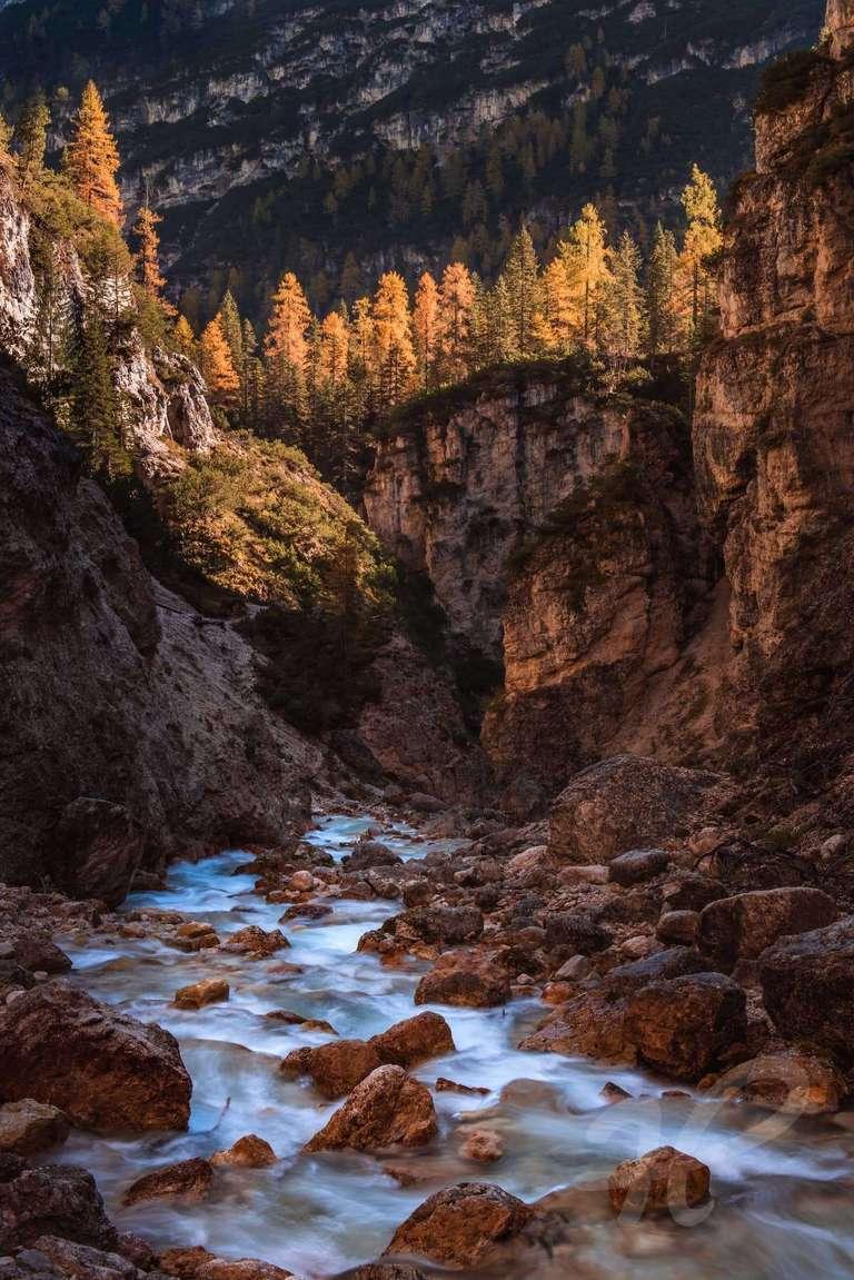 Lerchen in den Dolomiten