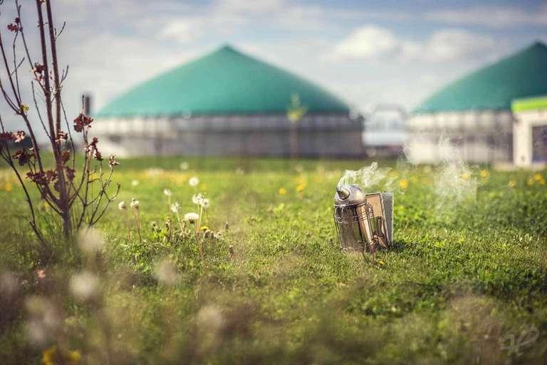 Smoker auf der Biogasanlage
