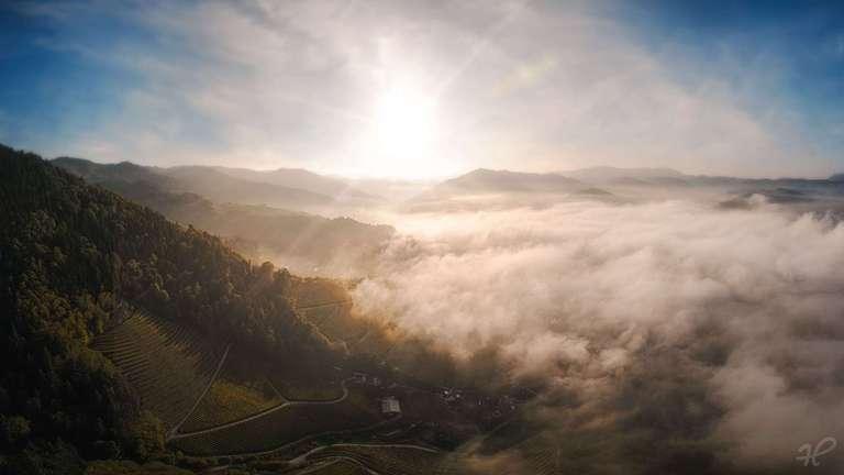Sonnenaufgang über Nebel in Oberkirch