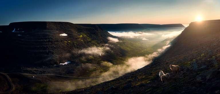 Wolkental-Panorama mit Schafen in Island in großer Auflösung