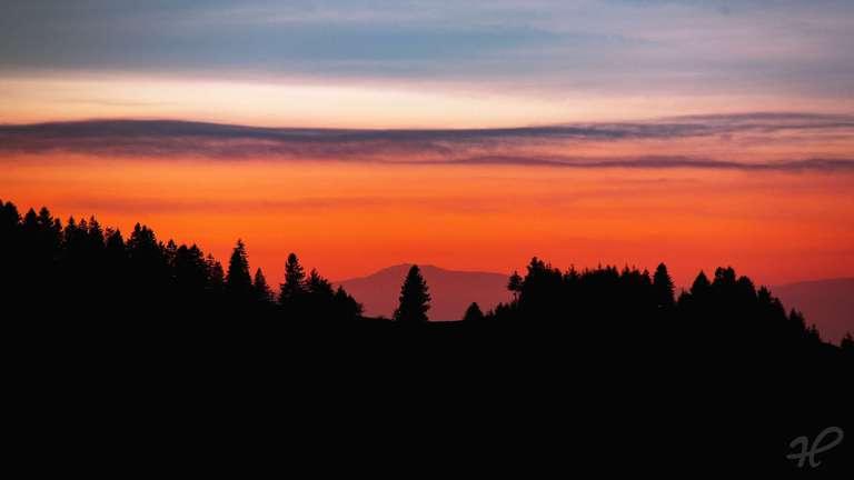Schwarzwald Silhouette