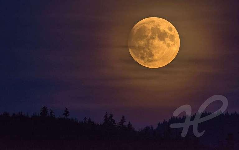 Der Mond von Schleierwolken umhüllt über dem Schwarzwald