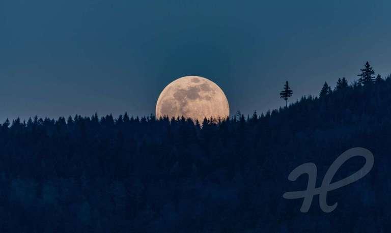 Mondaufgang im April 2020 über dem Beerstein/Schwarzwald