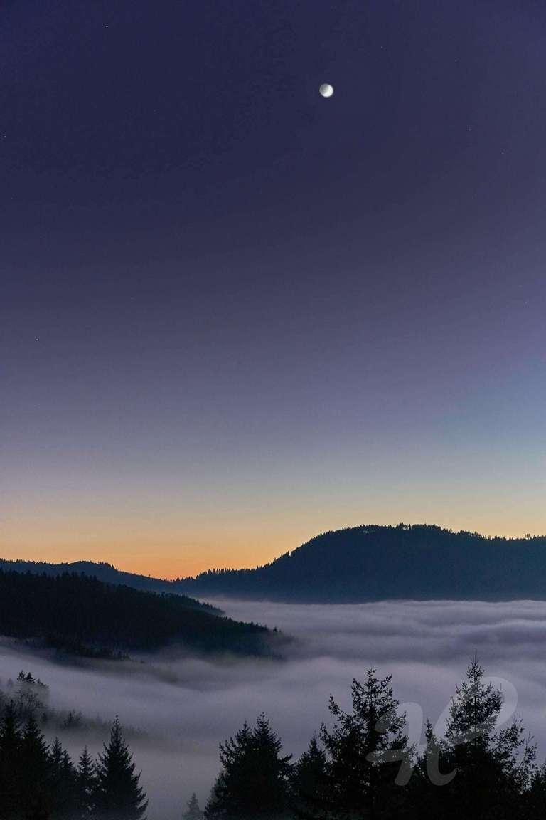 Nebel im Mondschein