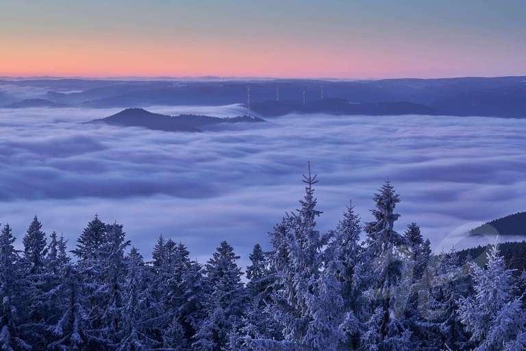 Nebel im Kinzigtal