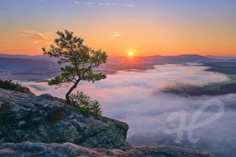 über dem Nebel auf dem Lilienstein