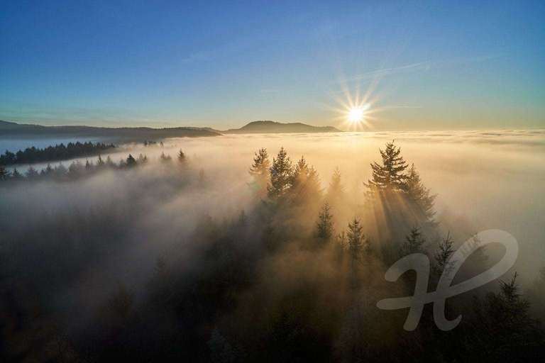 Geigerskopf im Nebel