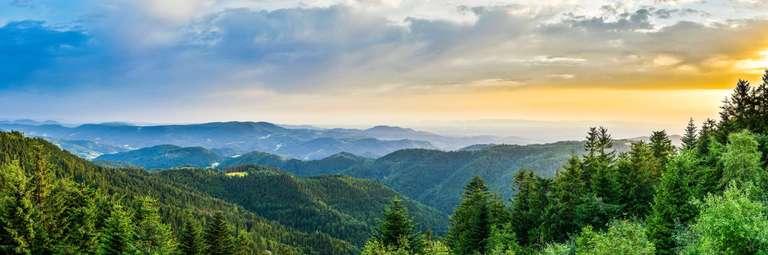 Schwarzwaldpanorama vom Schliffkopf