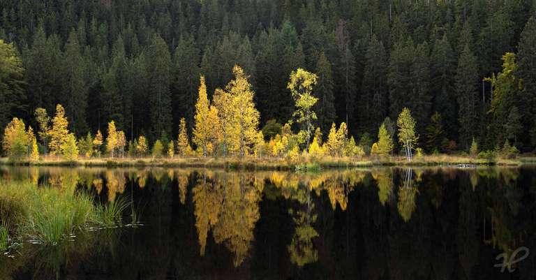 Der Buhlbachsee im Herbst