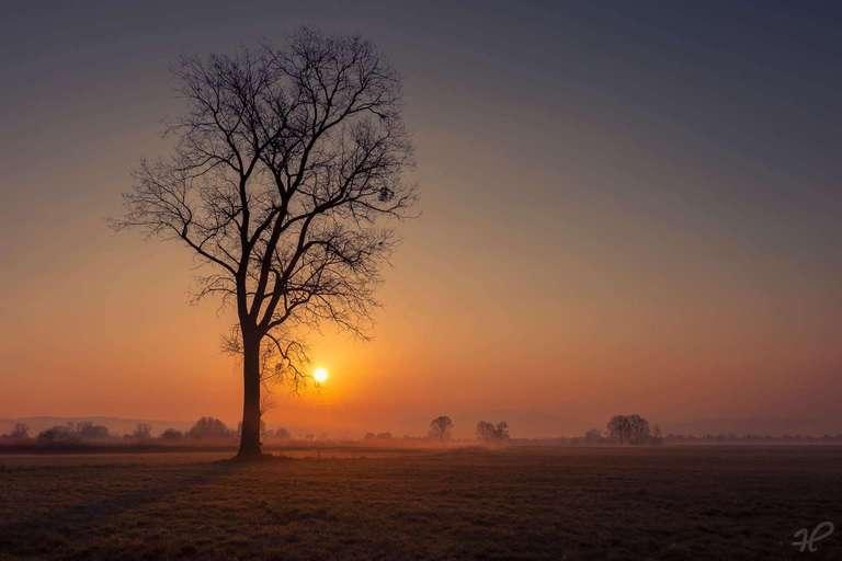Sonnenaufgang im Kaiserstuhl