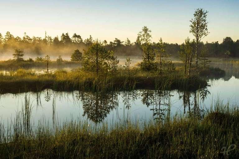 Skandinavien im Schwarzwald