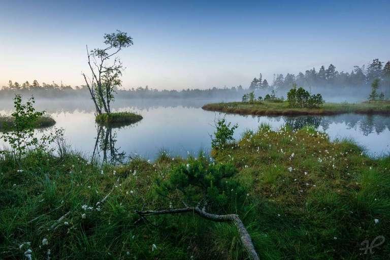 Sonnenaufgang Wildsee