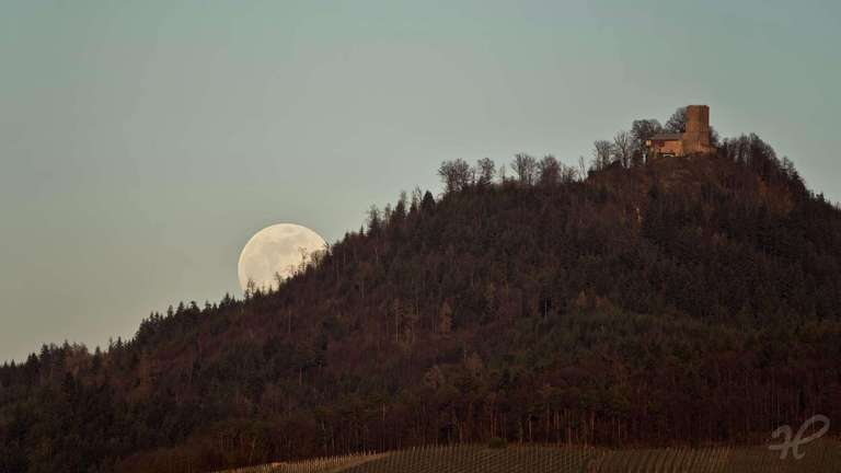 Mondaufgang hinter der Yburg bei Bühl