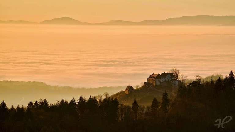 Schloß Staufenberg über dem Nebel des Rheintals