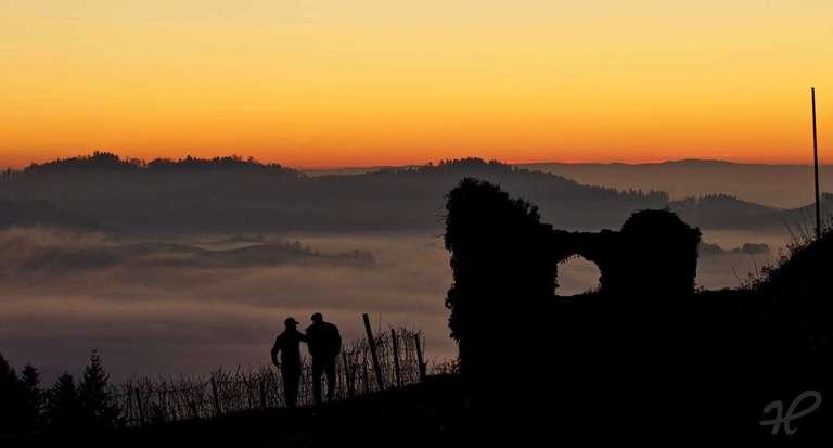 nach Sonnenuntergangang an der Schauenburg in Oberkirch