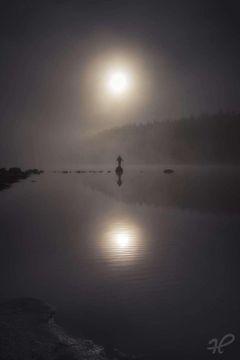 Mystische Nebelstimmung mit Sonne
