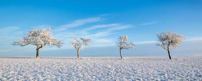 Winter in Marpingen