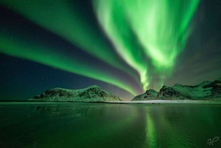 Grüne Show auf den Lofoten