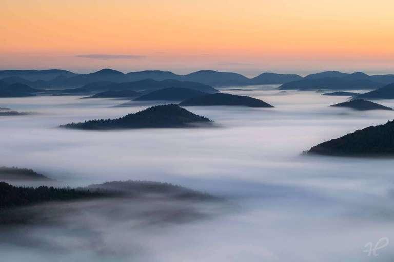 Nebel über dem Wald - PFälzerwald