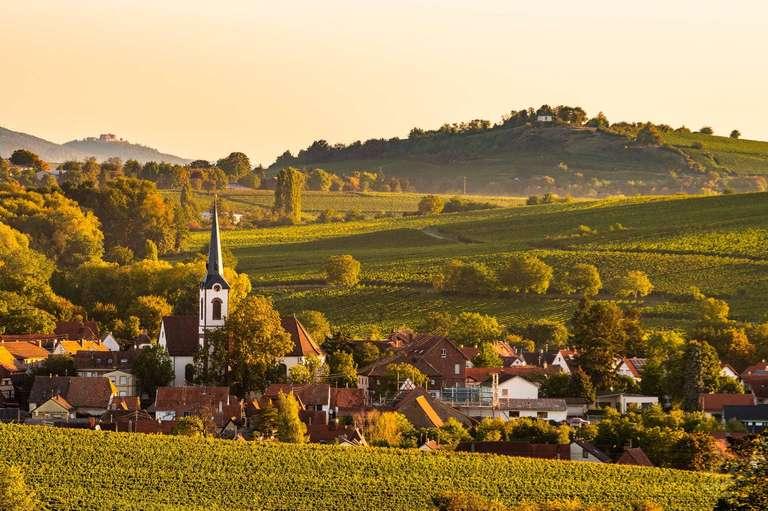 Göcklingen Pfalz
