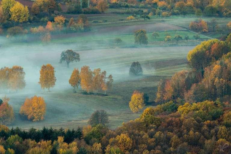 Im Nebel - Ein Heimatfoto von André Straub aus Freinsheim. Er bietet dieses wunderschöne Foto aus der Pfalz über Heimatfotos.de an. Es kann als Wandbild bestellt werden