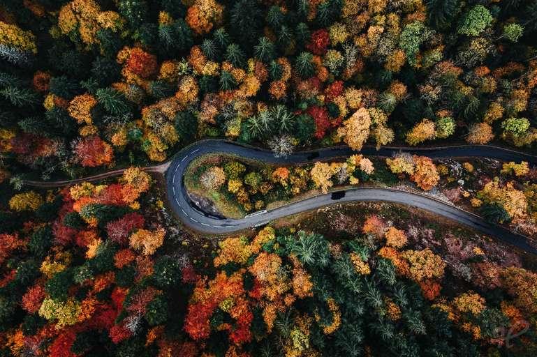 Farben des Herbstes - Straßenkehre