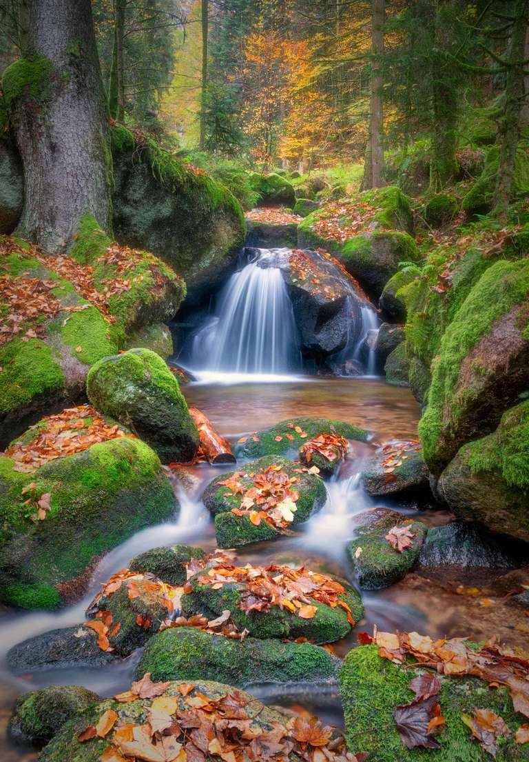 Wasserfall im Herbstlaub