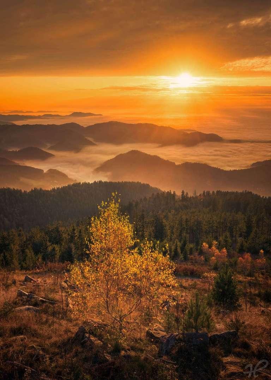 Herbstliche Inversion II